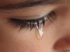 weepingeyesmall