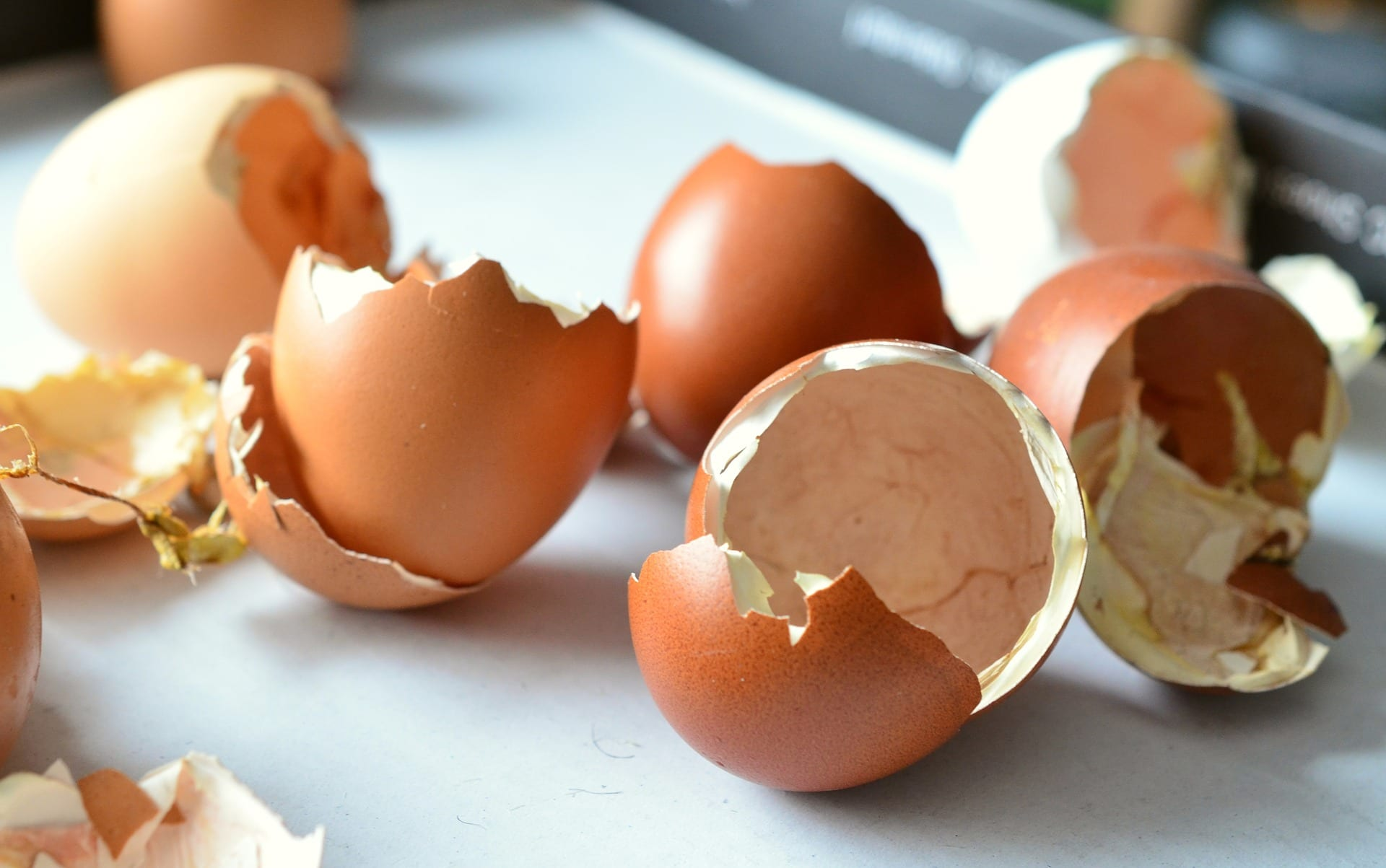 Post image for Are You Sick and Tired of Walking on Eggshells?
